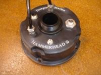 Hammerhead for Inspiration